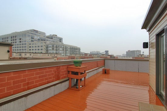 Real Estate Photography - 1029 N Kingsbury, Chicago, IL, 60610 - Roof Deck