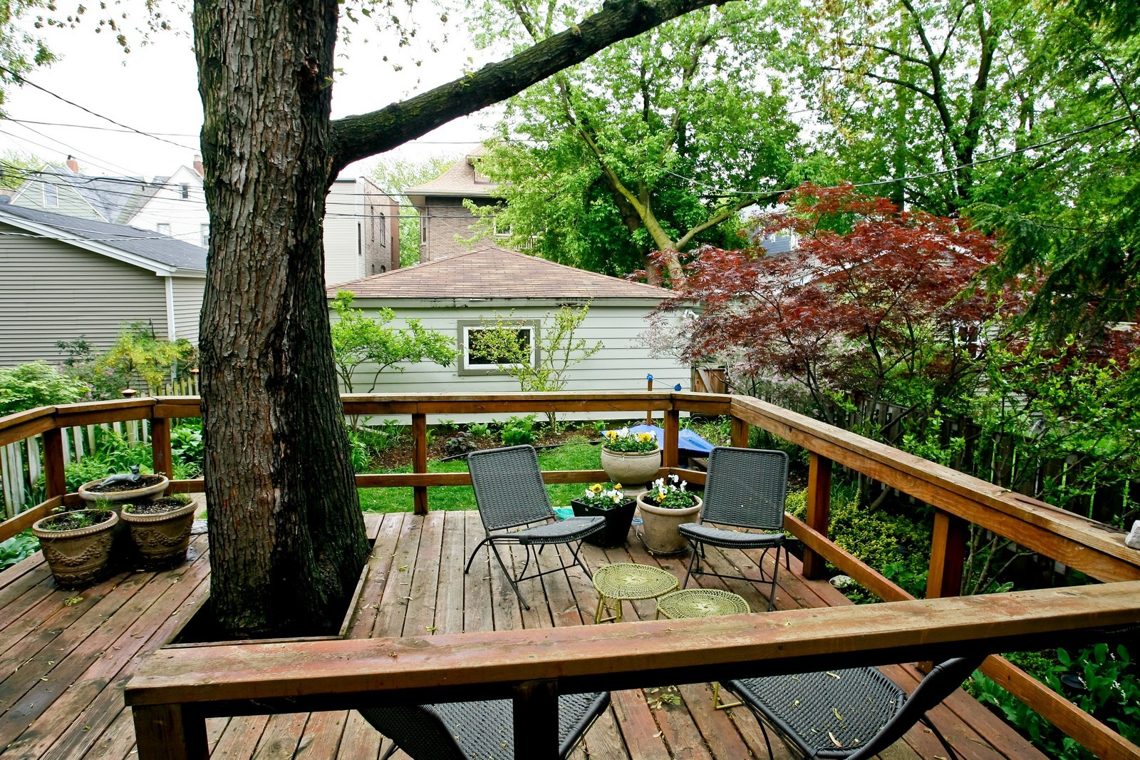 Real Estate Photography - 1457 W Pensacola, Chicago, IL, 60613 - Back Yard
