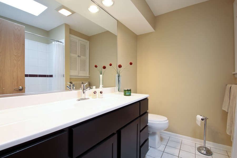 Real Estate Photography - 873 Willow Lane, Willowbrook, IL, 60527 - Master Bathroom