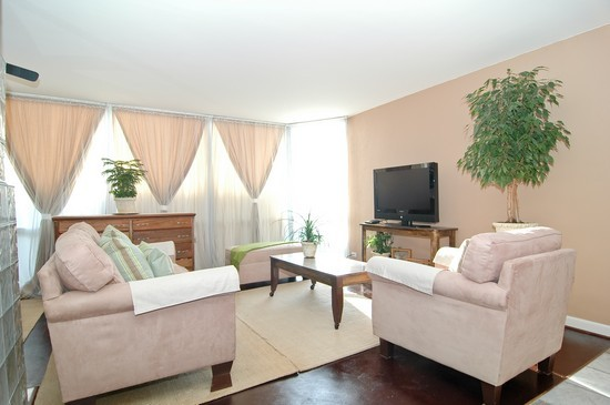 Real Estate Photography - 21 W Goethe St, Unit 12A, Chicago, IL, 60610 - Living Room