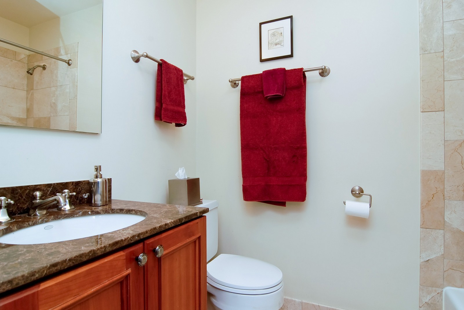 Real Estate Photography - 826 W Wolfram St, Chicago, IL, 60657 - Master Bathroom