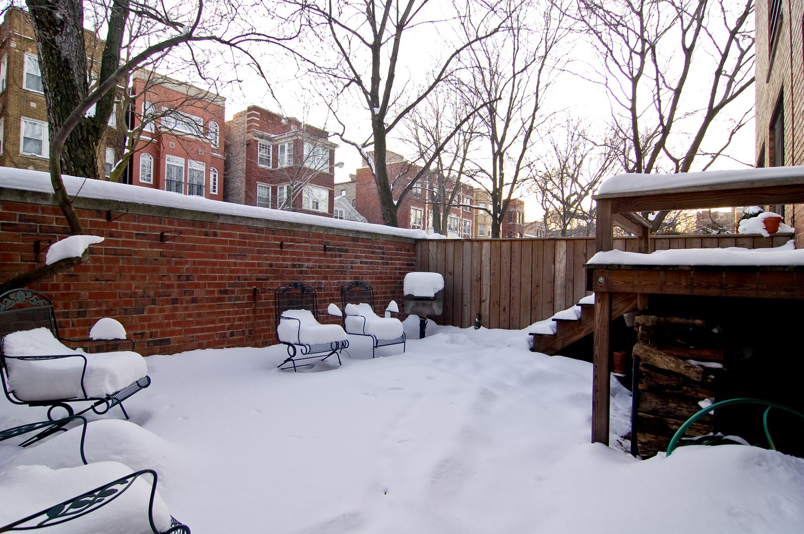 Real Estate Photography - 826 W Wolfram St, Chicago, IL, 60657 - Back Yard