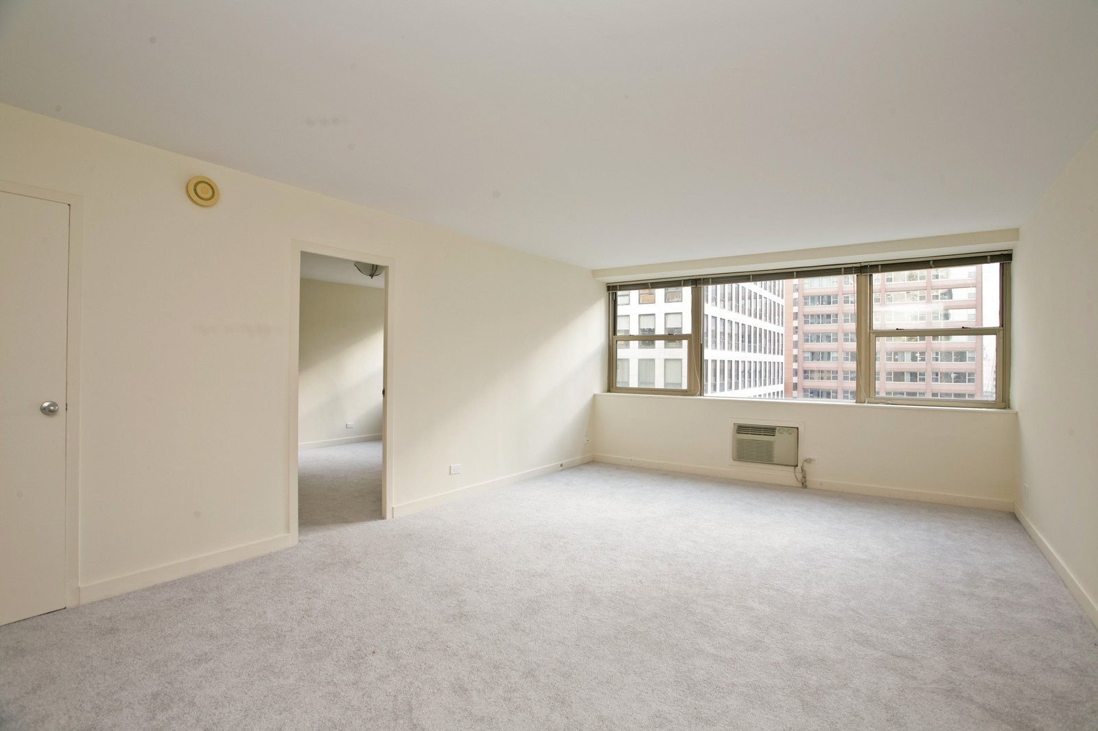 Real Estate Photography - 253 E Delaware, Apt 10F, Chicago, IL, 60611 - Living Room