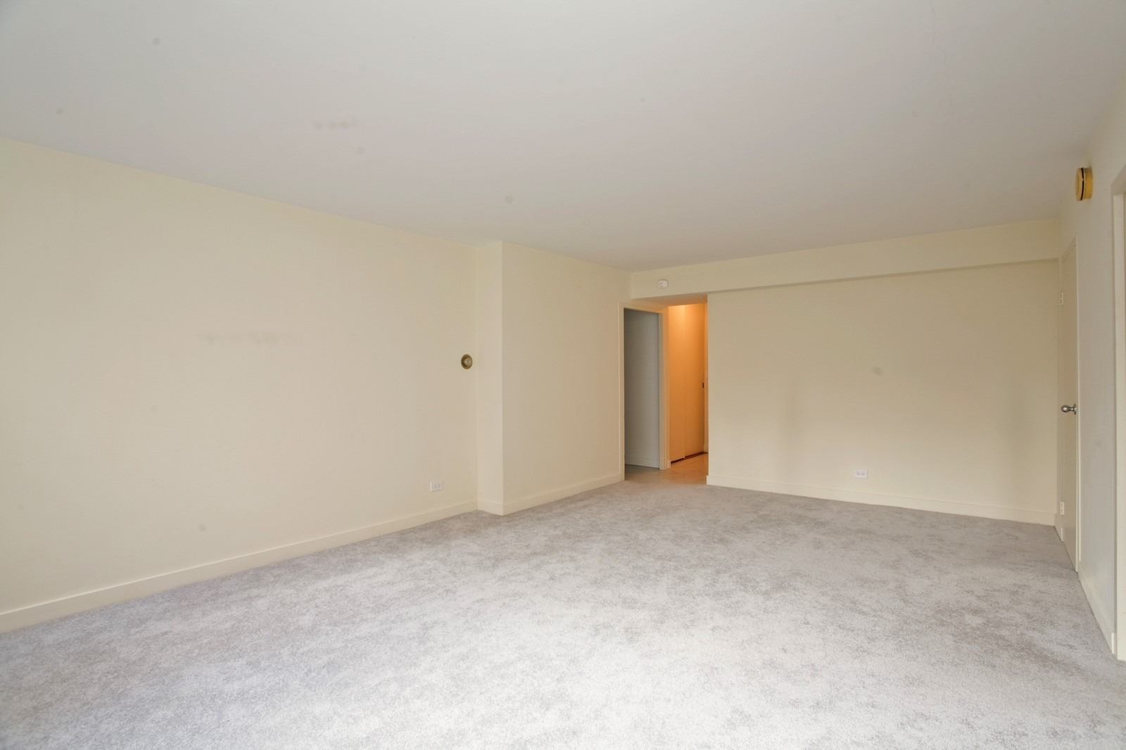 Real Estate Photography - 253 E Delaware, Apt 10F, Chicago, IL, 60611 - Location 1