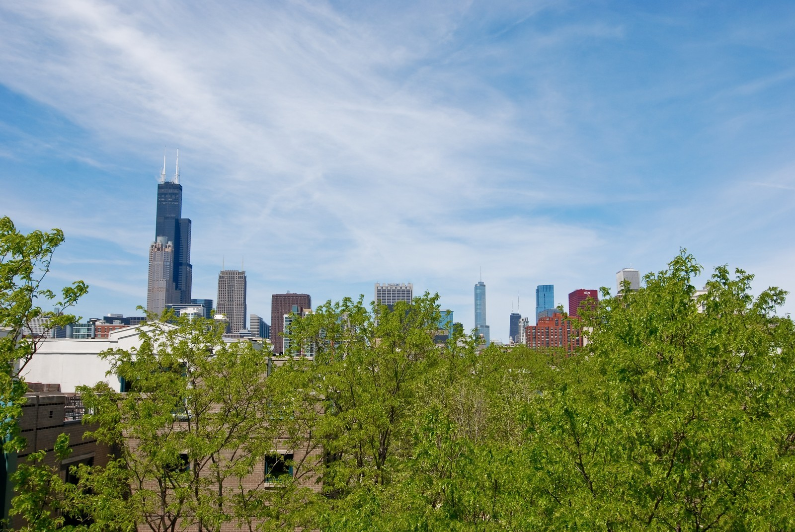 Real Estate Photography - 1416 S Federal, Unit D, Chicago, IL, 60605 - View