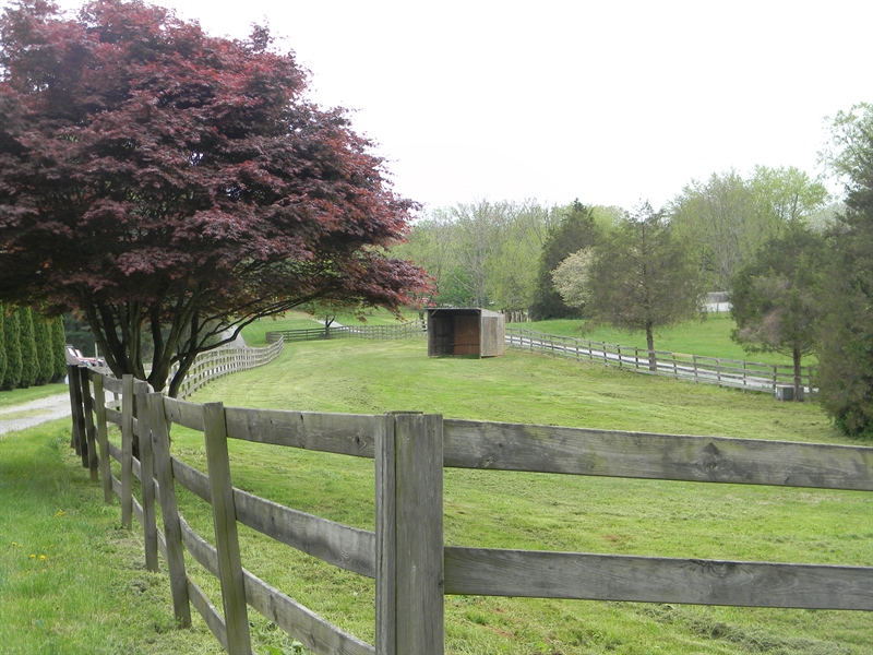 Real Estate Photography - 695 Ragan Rd, Conowingo, MD, 21918 - PASTURE, RUN IN SHED