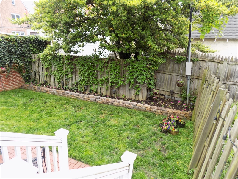 Real Estate Photography - 807 W 22nd St, Wilmington, DE, 19802 - Back yard space