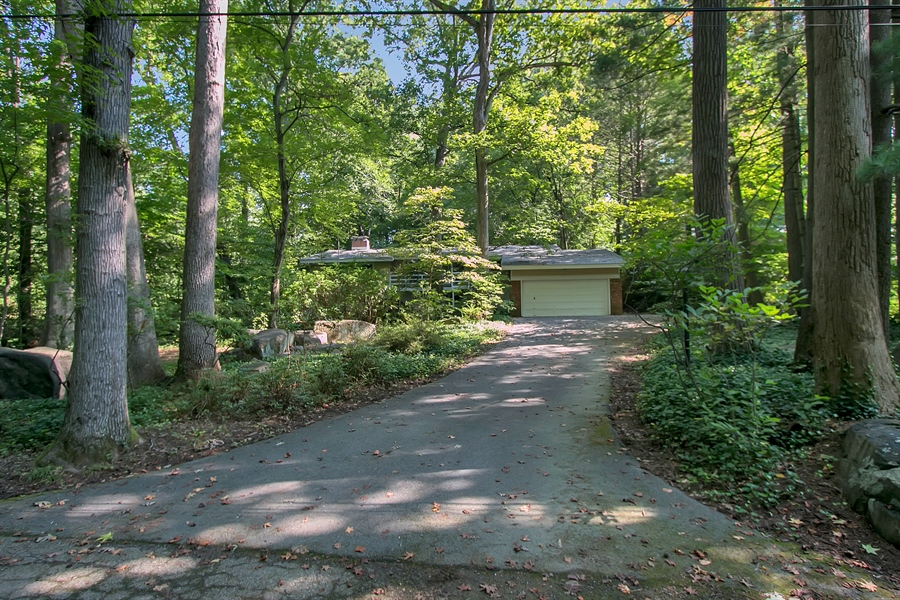 Real Estate Photography - 40 Indian Field Rd, Wilmington, DE, 19810 - Pretty and Private Wooded Lot!