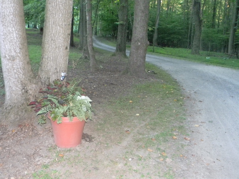 Real Estate Photography - 1 Heather Hill Ln, Elkton, MD, 21921 - Private entrance lane