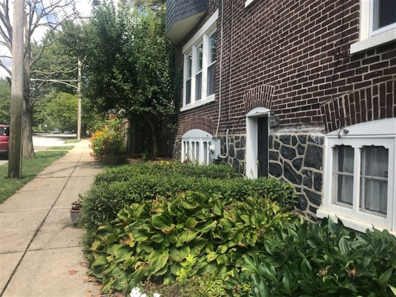 Real Estate Photography - 2101 N Grant Ave, Wilmington, DE, 19806 - Green, green, green!