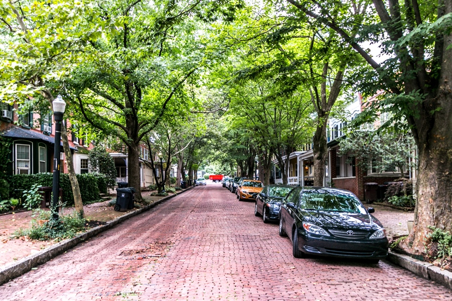 Real Estate Photography - 1003 Trenton Pl, Wilmington, DE, 19801 - Popular Tree Lined Street