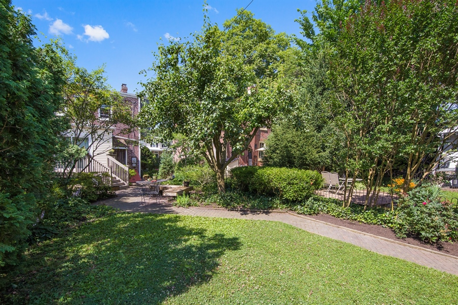Real Estate Photography - 2417 W 18th St, Wilmington, DE, 19806 - Newly sodded back yard with mature landscaping