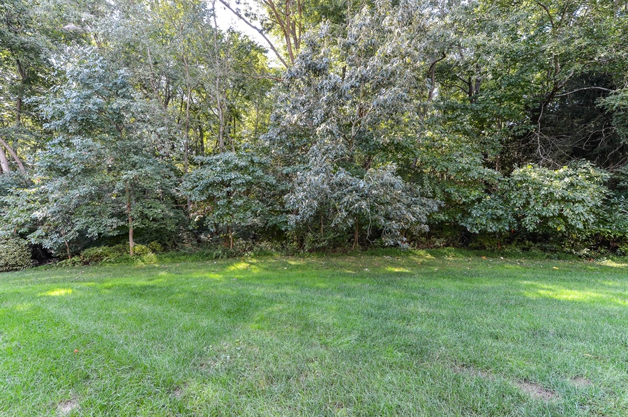 Real Estate Photography - 12 Briarcreek Ct, Newark, DE, 19711 - Deck backs to woods, with steps to down to ground