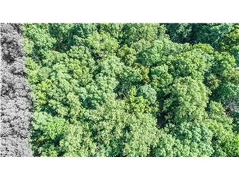 Real Estate Photography - Lot 16 Sparrows Way, Elkton, DE, 21921-6432 - Location 4