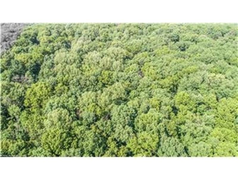 Real Estate Photography - Lot 16 Sparrows Way, Elkton, DE, 21921-6432 - Location 5