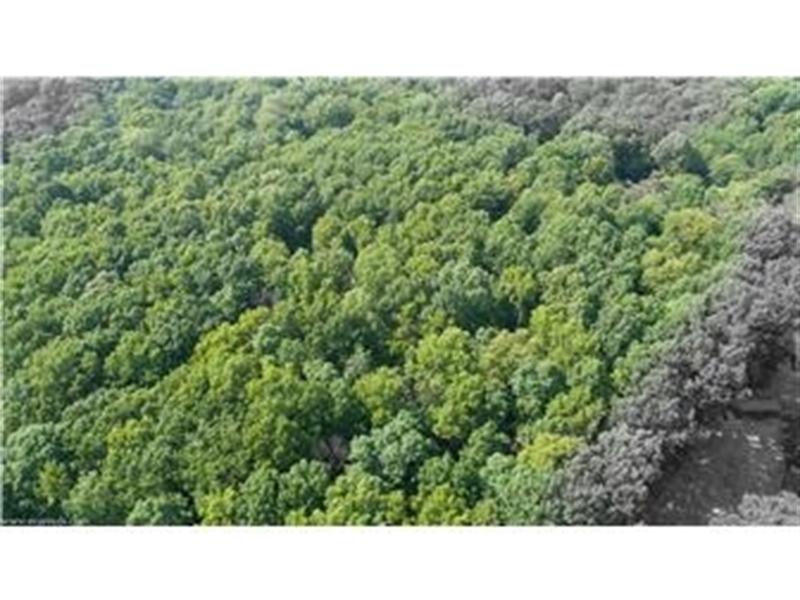 Real Estate Photography - Lot 16 Sparrows Way, Elkton, DE, 21921-6432 - Location 6