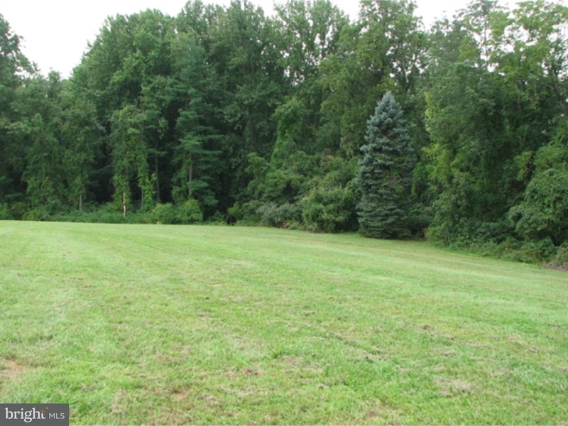 Real Estate Photography - 105 Avery Rd, Kennett Square, PA, 19348 - Rear of Lot in The Hamlet