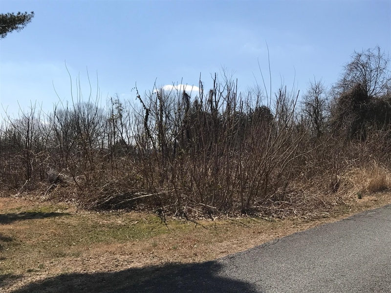 Real Estate Photography - Lot 18 Greenhaven Drive, Elkton, DE, 21921 - imagine your dream home here