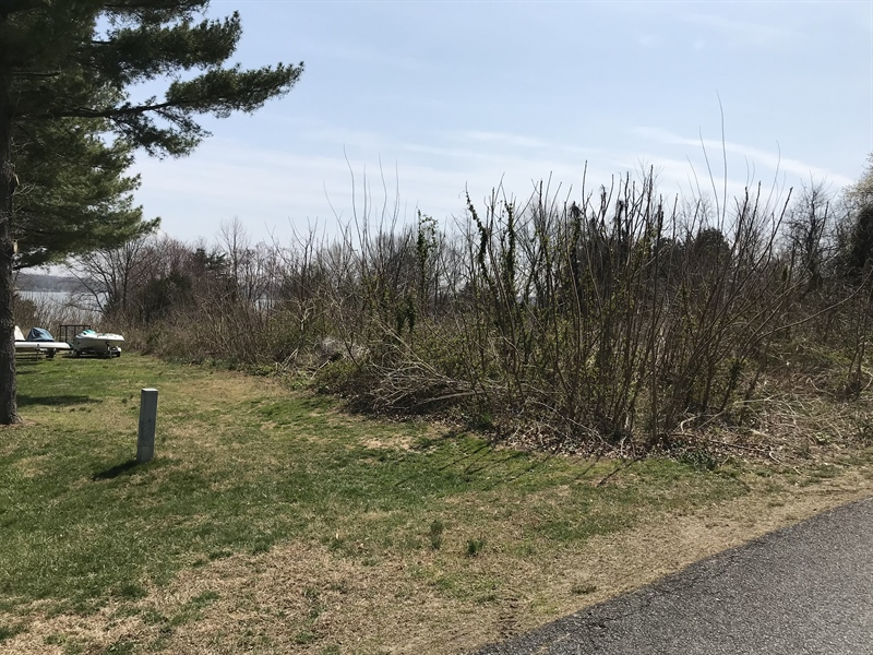 Real Estate Photography - Lot 18 Greenhaven Drive, Elkton, DE, 21921 - view to Elk River from back of lot