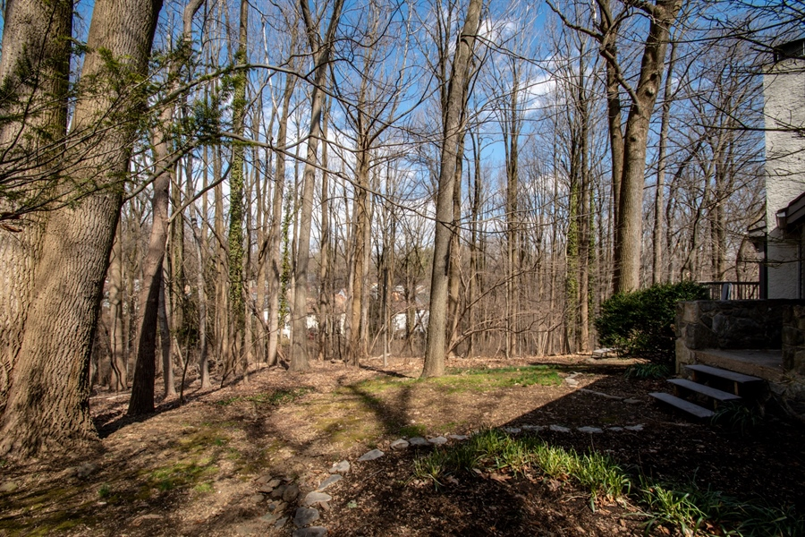 Real Estate Photography - 20 Forest Rdg, Newark, DE, 19711 - Wooded View