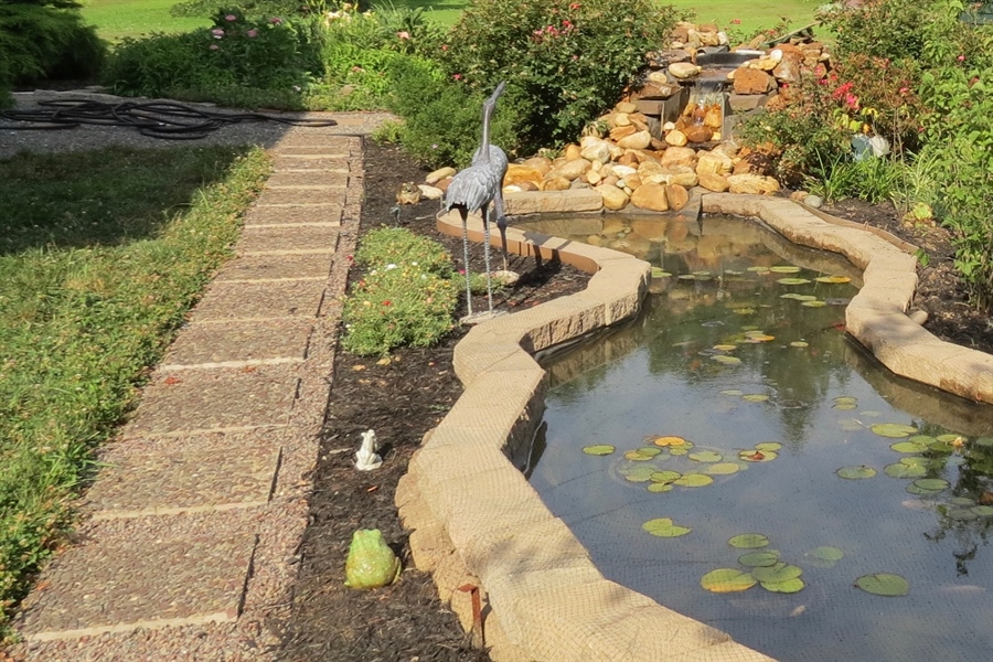 Real Estate Photography - 827 Locust Point Rd, Elkton, MD, 21921 - Fish Pond