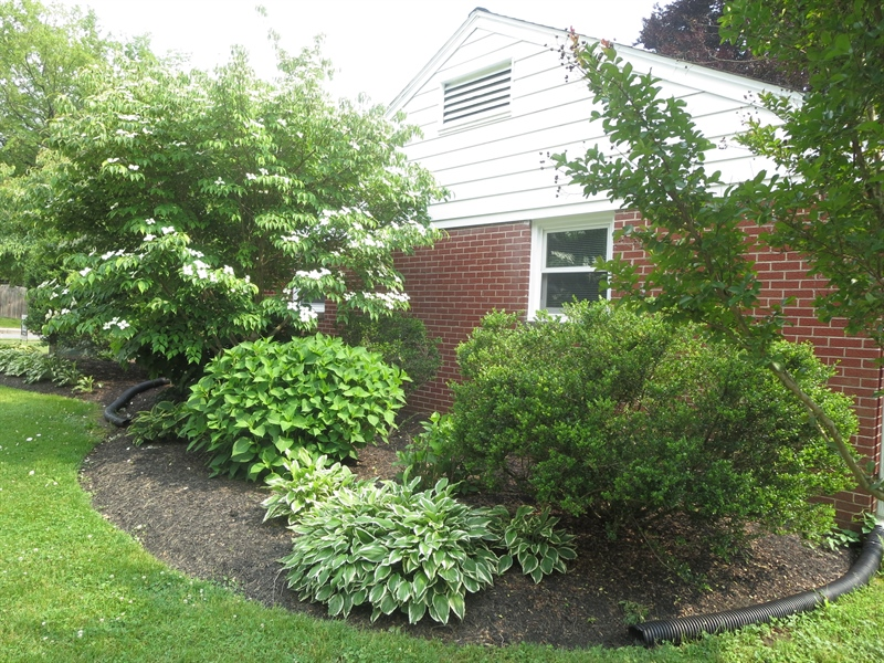 Real Estate Photography - 228 Beverly Rd, Newark, DE, 19711 - North End Landscaping