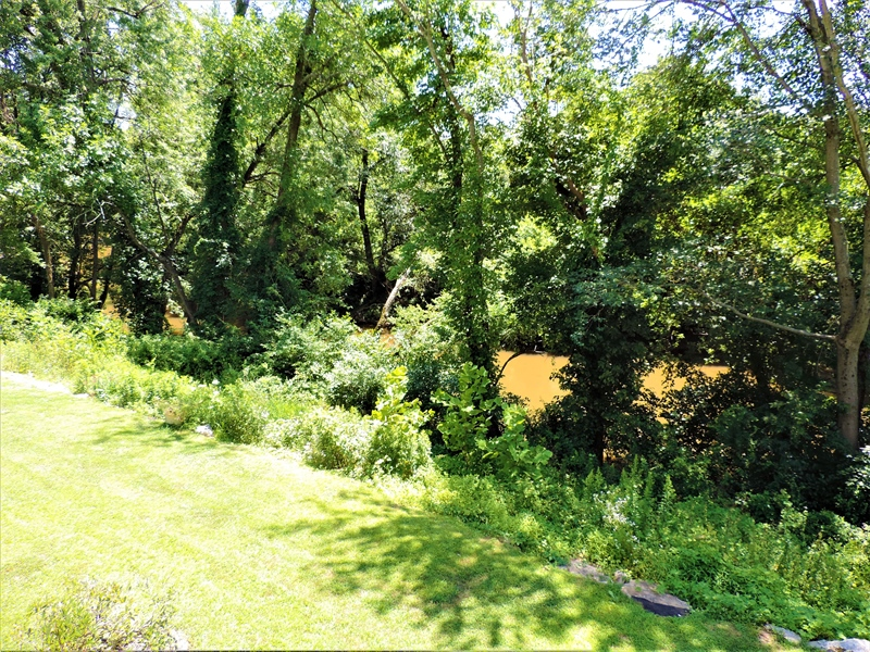Real Estate Photography - 310 2nd St, Newark, DE, 19711 - Gorgeous backyard view of White Clay Creek!