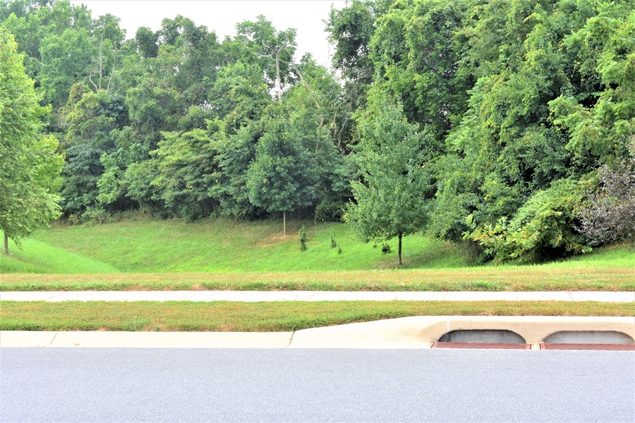 Real Estate Photography - 503 Maiden Ct, Middletown, DE, 19709 - View Across The Street