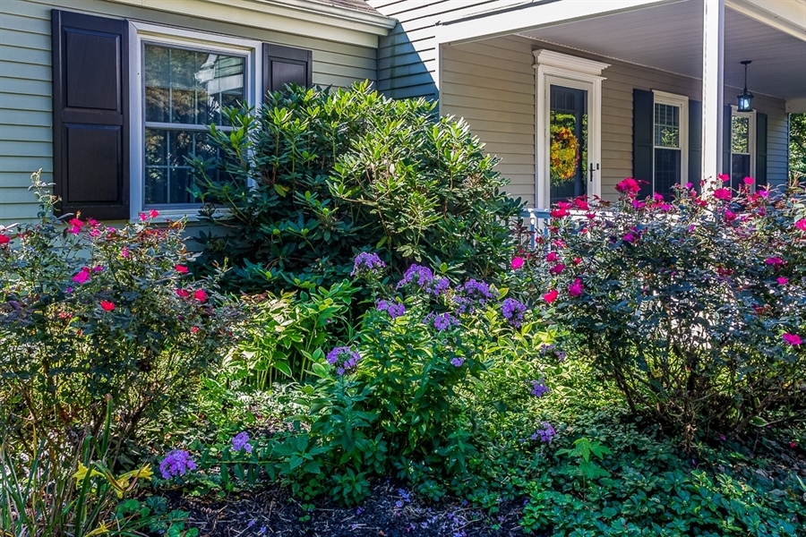 Real Estate Photography - 700 Fawn Rd, Newark, DE, 19711 - beautiful flowers and vegetation