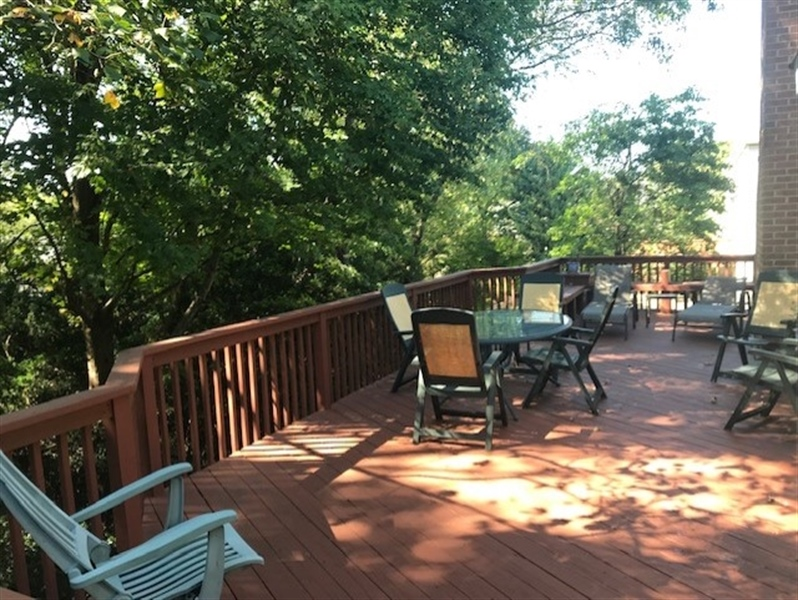 Real Estate Photography - 7 Woodpecker Rd, Newark, DE, 19711 - Private Wooded Backyard