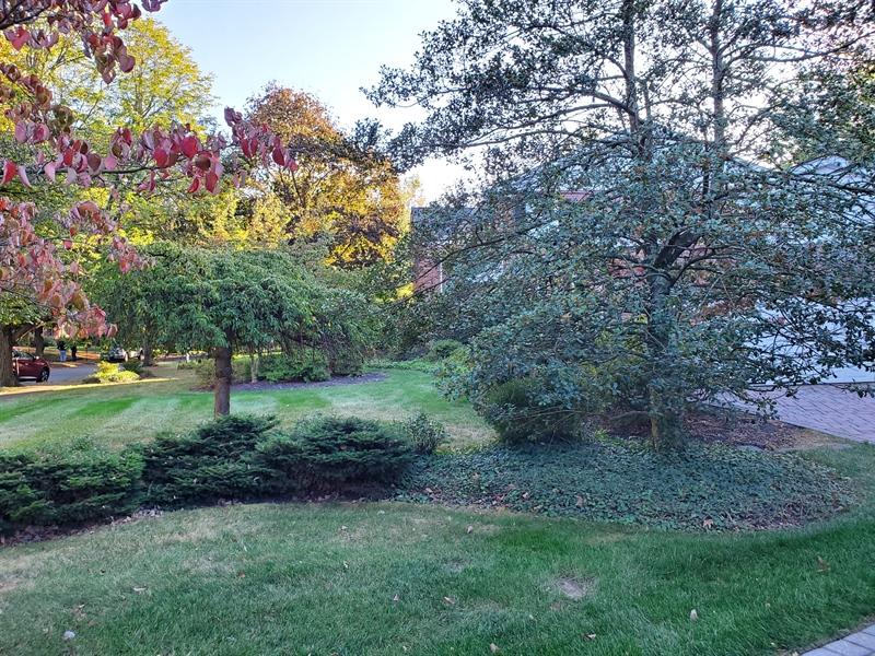 Real Estate Photography - 615 Berwick Rd, Wilmington, DE, 19803 - Professionally Landscaped front and back yards