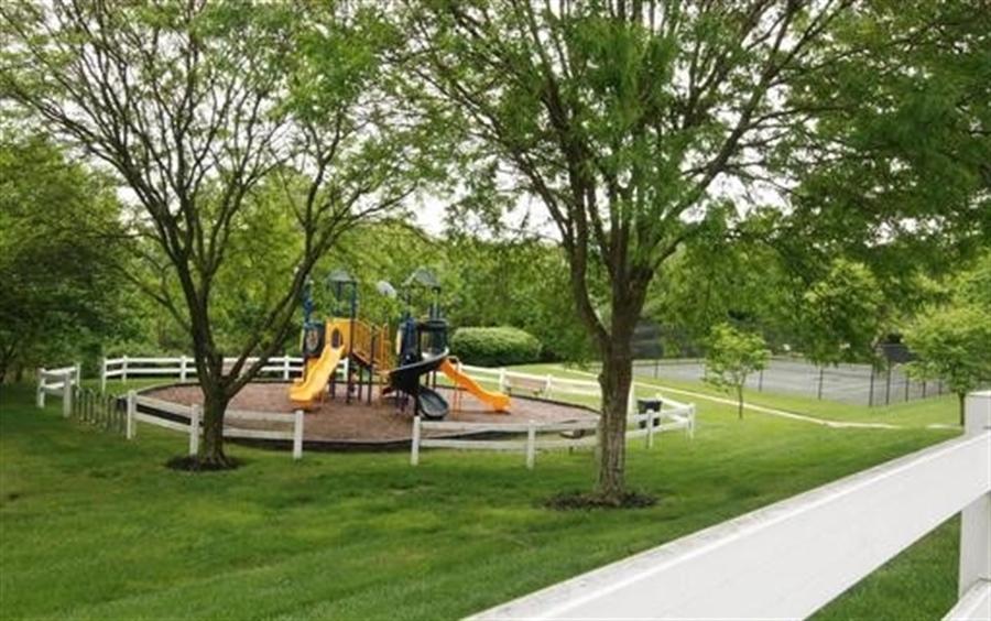 Real Estate Photography - 1 Spring Valley Ln, Hockessin, DE, 19707 - Neighborhood Playground