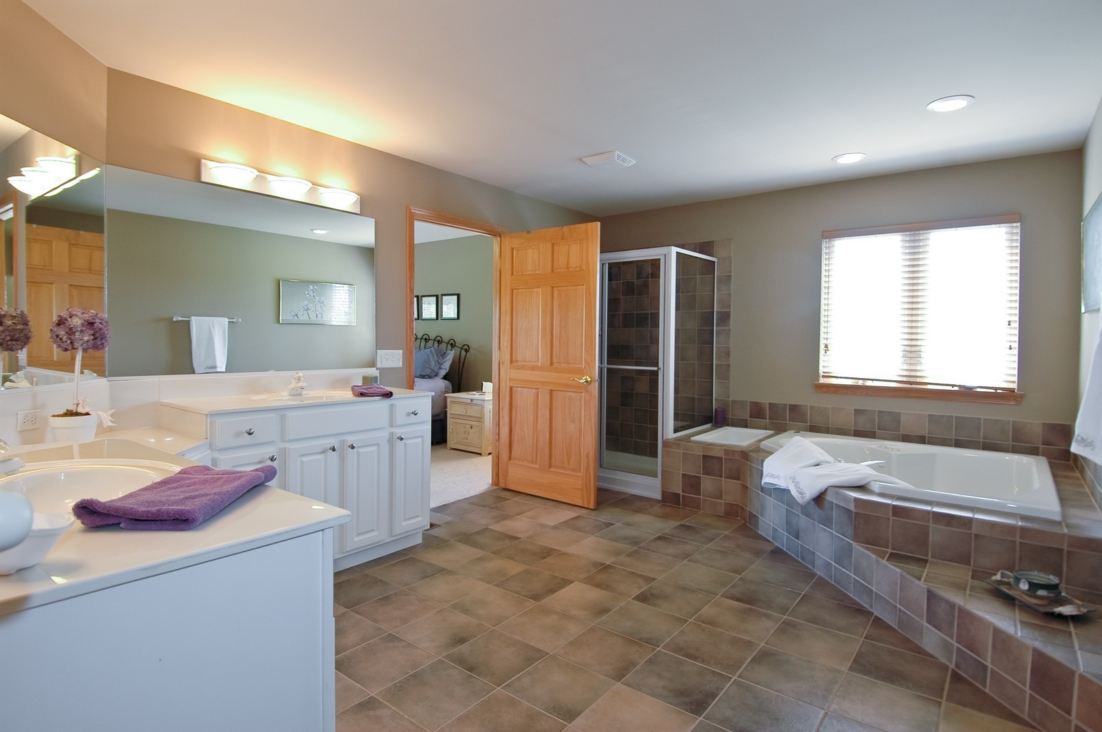Real Estate Photography - 750 Saratoga Circle, Algonquin, IL, 60102 - Master Bathroom