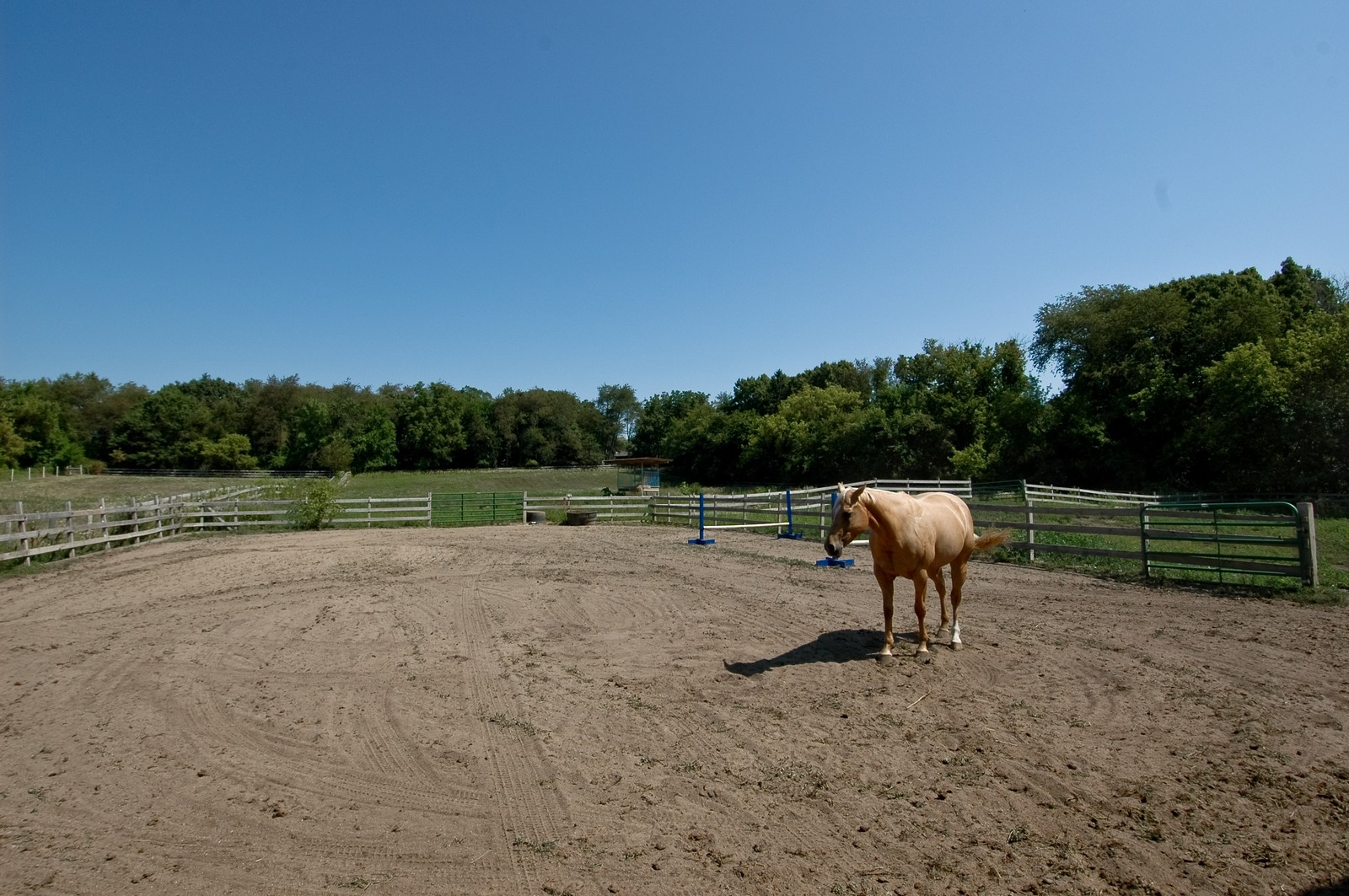 Real Estate Photography - 40W960 Chippewa Pass, Elgin, IL, 60124 - Sand Arena