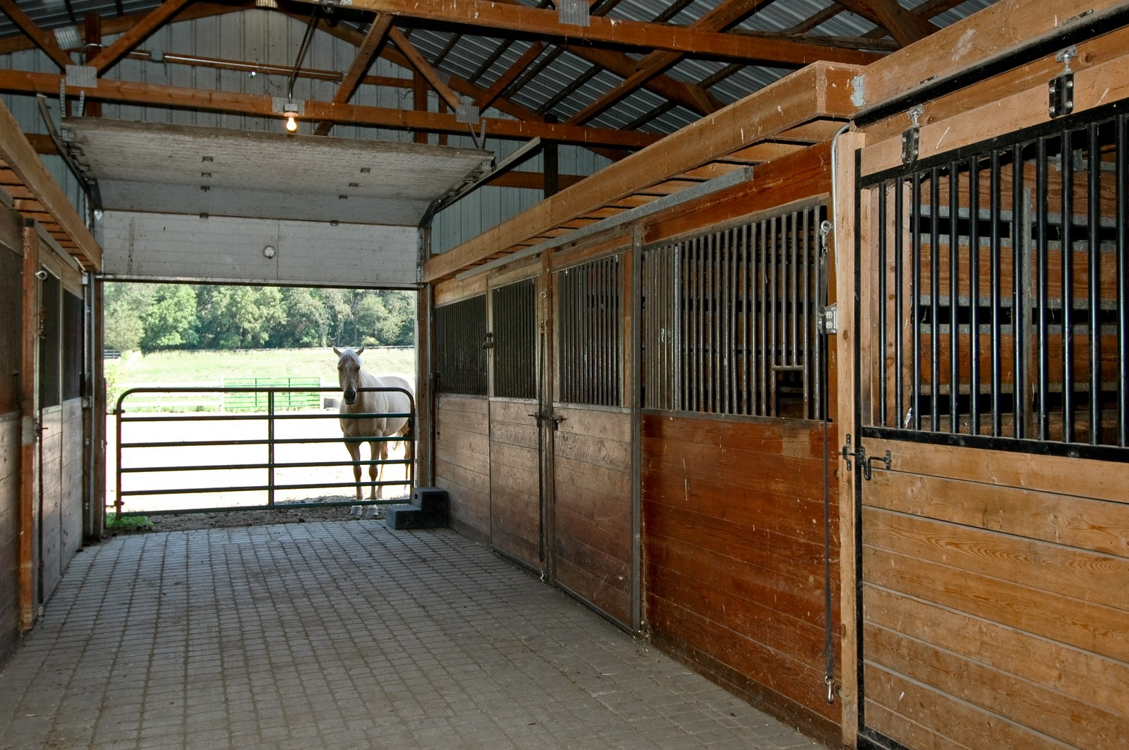 Real Estate Photography - 40W960 Chippewa Pass, Elgin, IL, 60124 - 5 Stall Barn Includes 1 Birthing Stall