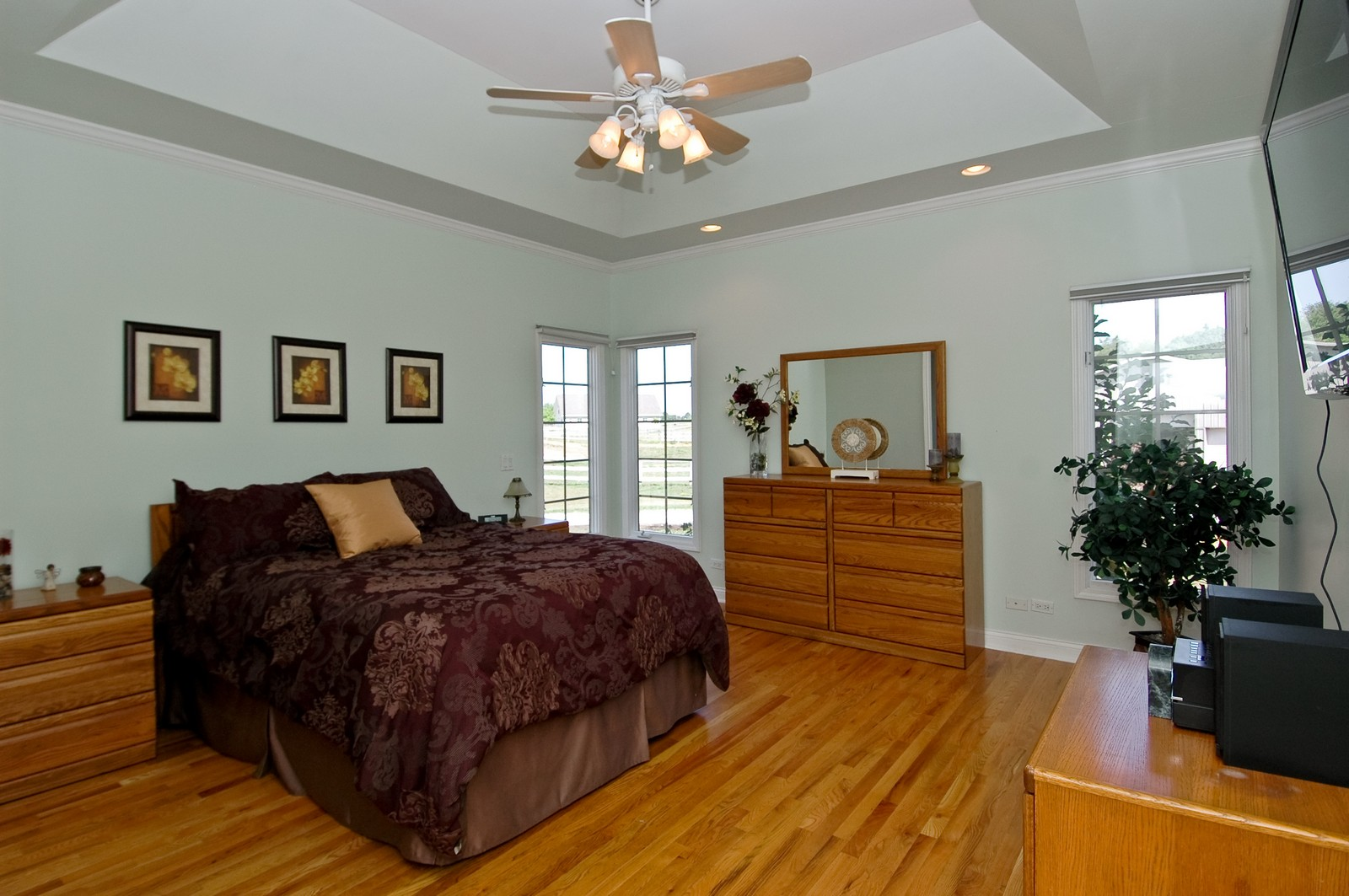 Real Estate Photography - 40W960 Chippewa Pass, Elgin, IL, 60124 - Dramatic Master Bedroom with Tray Ceiling