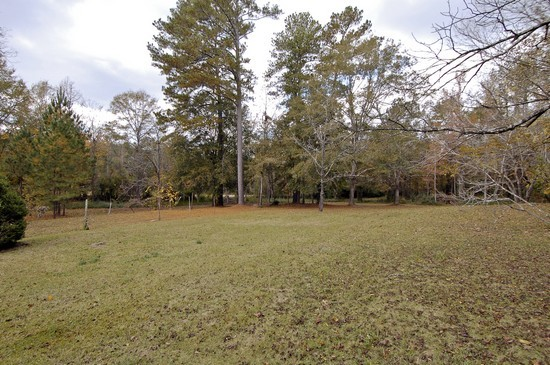 Real Estate Photography - 1603 Hwy 29, West Point, GA, 31833 - Side Yard