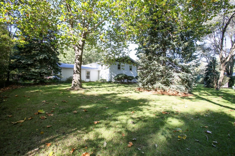 Real Estate Photography - 6919 Fairmount Ave, Downers Grove, IL, 60516 - Rear View