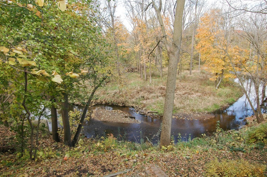 Real Estate Photography - 250 Spring Cove Rd, Elgin, IL, 60123 - Back Yard
