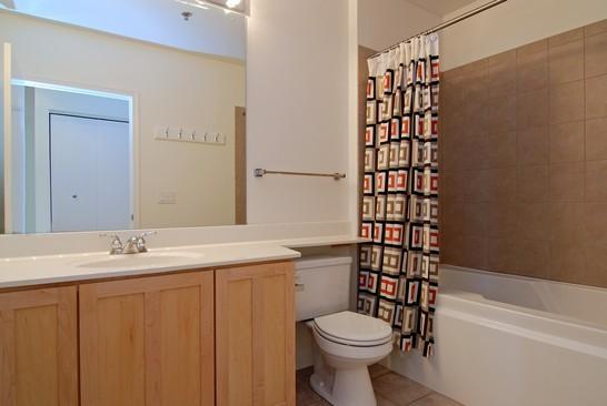 Real Estate Photography - 1322 S Prairie, Unit 1103, Chicago, IL, 60605 - Bathroom