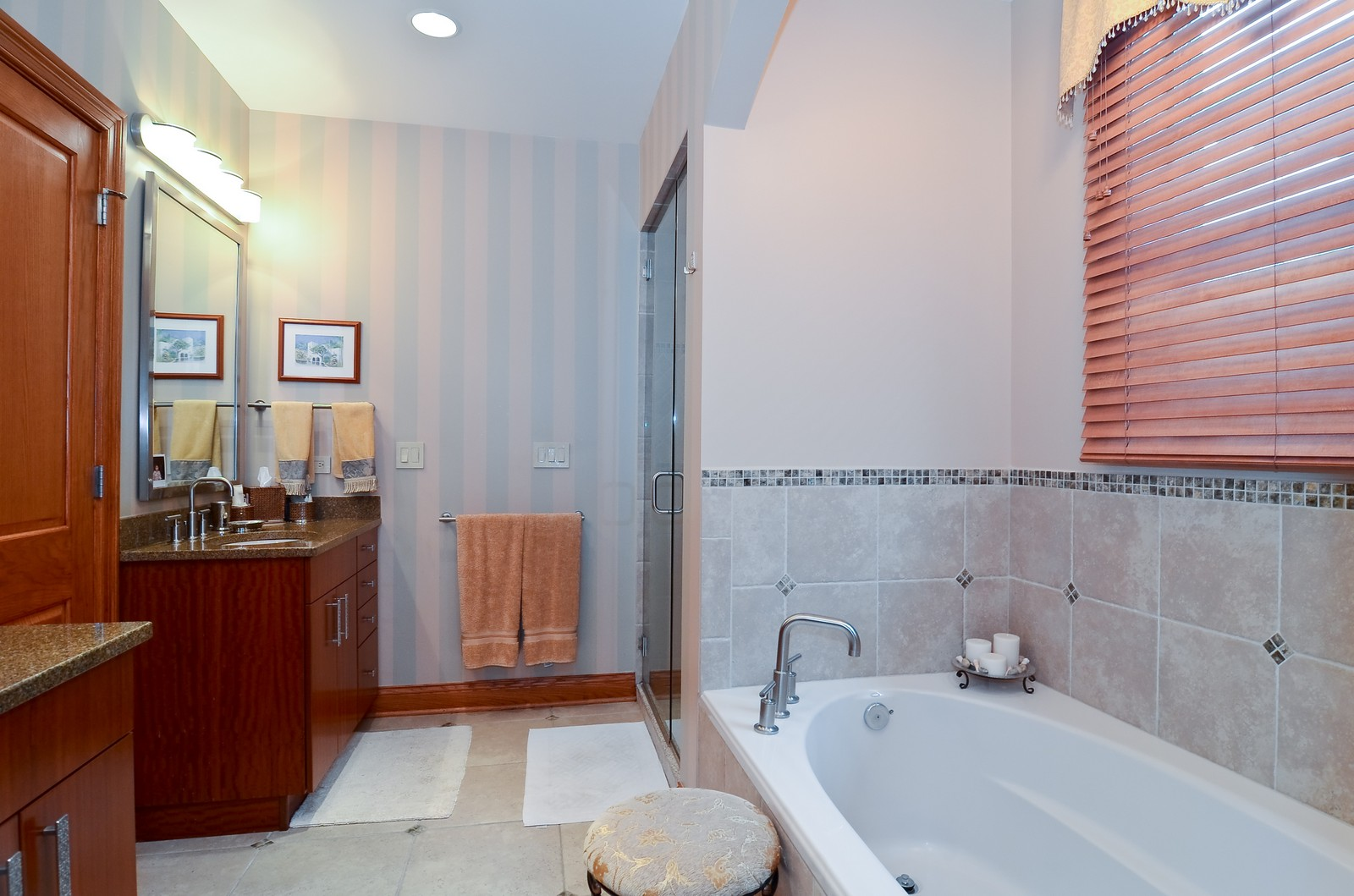 Real Estate Photography - 1443 S. Emerald, Chicago, IL, 60607 - Master Bathroom