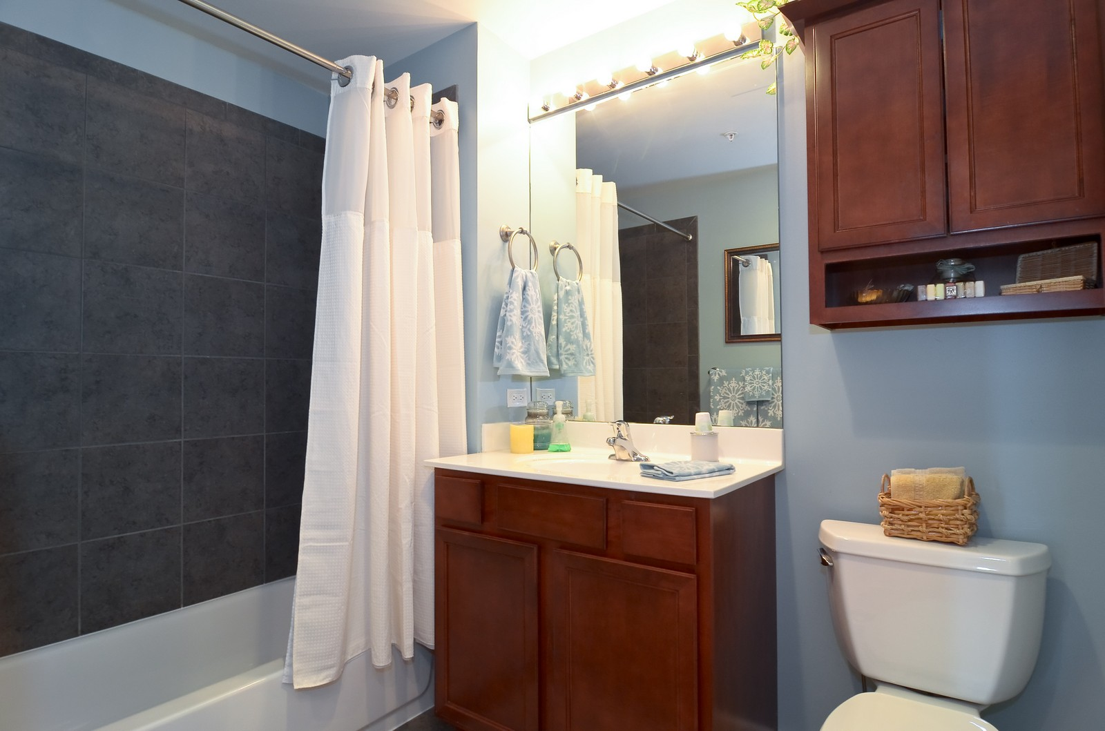 Real Estate Photography - 1629 S. Prairie, 1401, Chicago, IL, 60616 - Bathroom