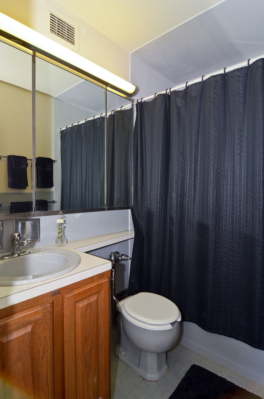 Real Estate Photography - 1550 N Lakeshore Dr, Unit 2E, Chicago, IL, 60610 - Bathroom