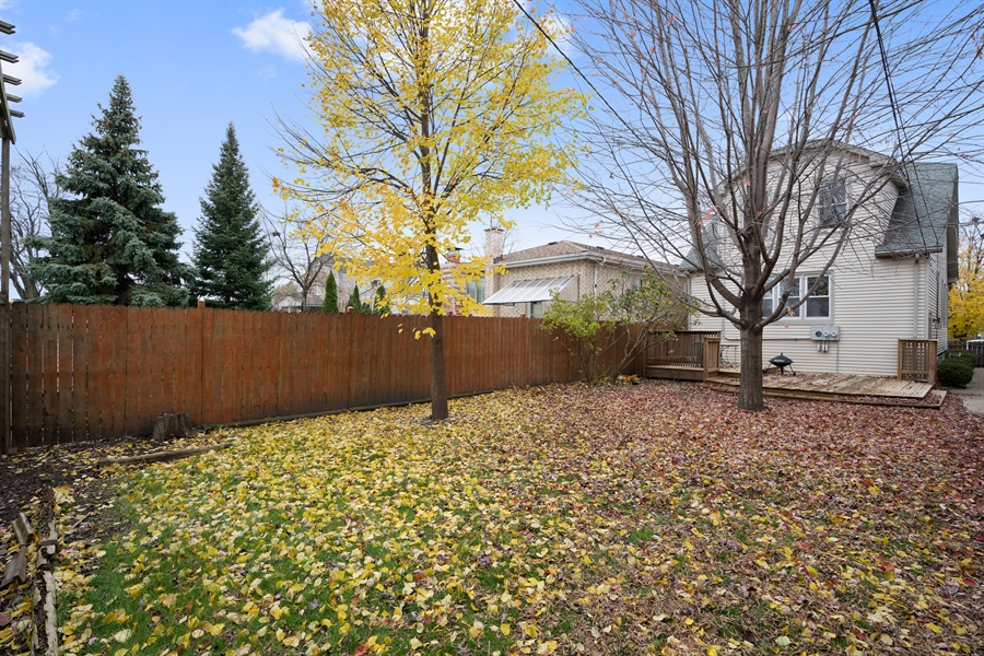 Real Estate Photography - 5317 N McVicker Ave, Chicago, IL, 60630 - Rear View