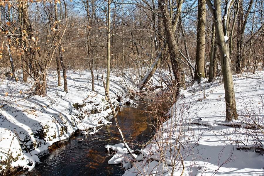 Real Estate Photography - 45328 Fairway Dr, Perkins, Grand Beach, MI, 49117 - Backyard view of White Creek