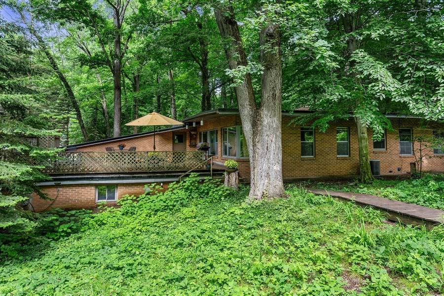 Real Estate Photography - 9715 Evergreen Drive, Bridgman, MI, 49106 - Rear View