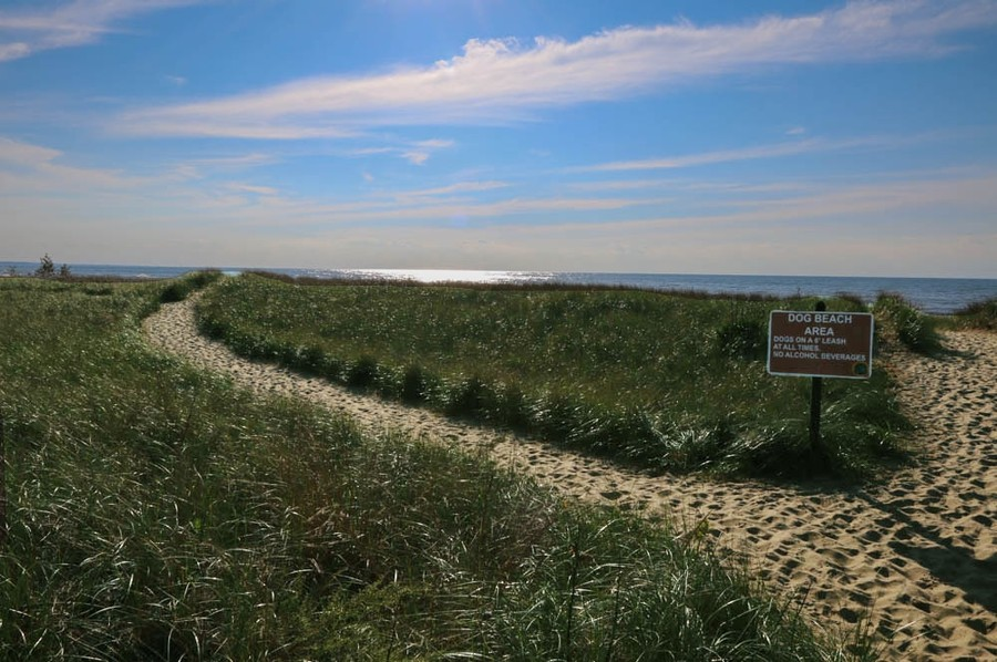 Real Estate Photography - 9715 Evergreen Drive, Bridgman, MI, 49106 - Weko Beach Park Dog Access To Beach