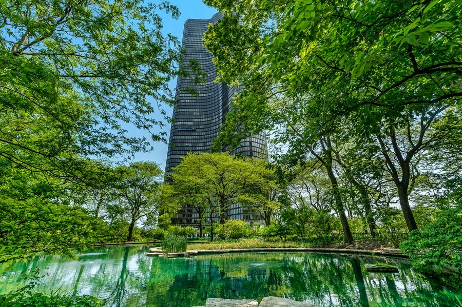 Real Estate Photography - 505 N Lakeshore Dr, Unit 3907, Chicago, IL, 60611 - Pond