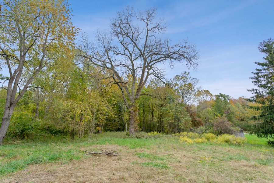 Real Estate Photography - 18743 Rose City Road, New Buffalo, MI, 49117 - Back Yard