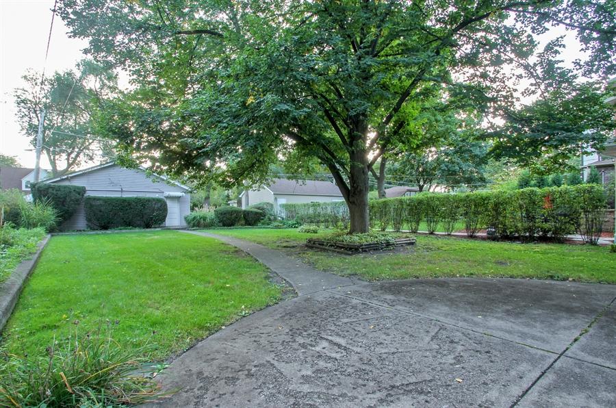 Real Estate Photography - 705 S Vine Ave, Park Ridge, IL, 60068 - Back Yard